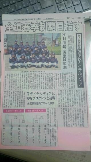 第17回北海道春季北海道女子軟式野球大会、全国最終予選